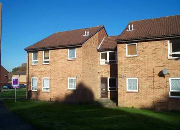 Thumbnail Studio to rent in Sark Close, Crawley