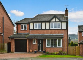Thumbnail 4 bed detached house for sale in Almond Way, Hope, Wrexham