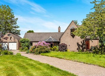 Thumbnail 4 bedroom detached house for sale in Arbuthnott, Laurencekirk