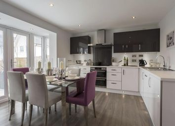 "Thumbnail 4 bed detached house for sale in ""Fernie"" at Scotstoun Avenue, South Queensferry, South Queensferry"