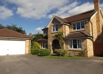 Thumbnail 5 bed detached house to rent in Newlyn Drive, Darlington