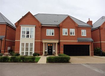 Thumbnail 5 bed detached house to rent in Rennoldson Green, Chelmsford