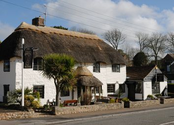Thumbnail Pub/bar for sale in Swan Hill Road, Colyford, Colyton, Devon