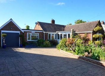 Thumbnail 4 bed detached bungalow for sale in Grove Hill, Belstead Village, Ipswich