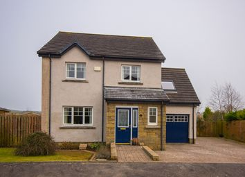 Thumbnail 4 bed detached house for sale in Lomond Crescent, Drongan