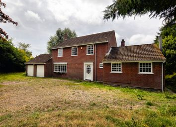 Thumbnail 4 bed detached house to rent in Meeting Hill Road, North Walsham
