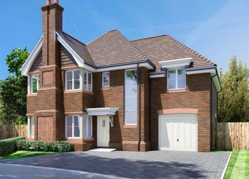 Thumbnail 4 bed detached house for sale in Winchfield View, Old Potbridge Road, Winchfield