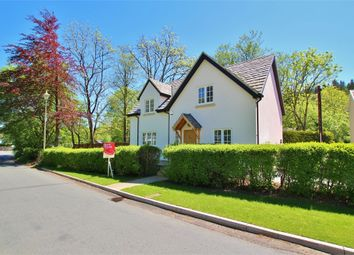 Thumbnail 3 bed detached house for sale in Draethen, Newport