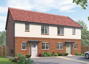 "Thumbnail 3 bed semi-detached house for sale in ""The Appleton Semi"" at Skinner Street, Creswell, Worksop"