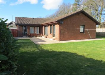 Thumbnail 4 bed detached bungalow to rent in Wellhope, Washington, Washington