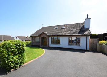 Thumbnail 5 bed detached house for sale in Blenheim Drive, Richhill, Armagh