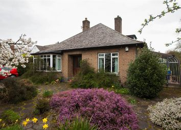 Thumbnail 4 bed terraced bungalow for sale in 30, Osborne Gardens, Belfast