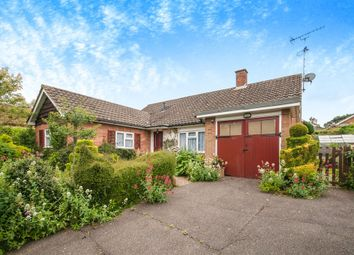 Thumbnail 3 bed detached bungalow for sale in Mildmays, Danbury, Chelmsford