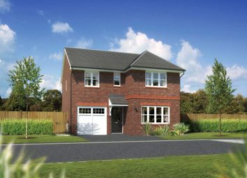 "Thumbnail 4 bedroom detached house for sale in ""Dukeswood"" at Ffordd Eldon, Sychdyn, Mold"