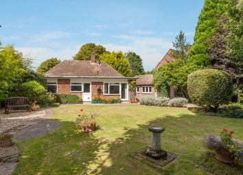 Thumbnail 3 bed detached bungalow for sale in Woodland Drive, Thorpe End, Norwich