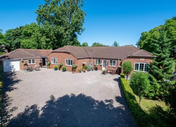 Thumbnail 4 bed detached bungalow for sale in High Street, Gosberton, Spalding