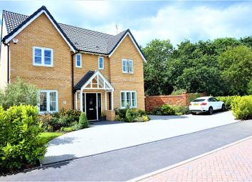 Thumbnail 4 bed detached house for sale in Oak Crescent, Wickford