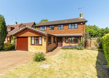Thumbnail 4 bed detached house for sale in Pine Walk, Bookham, Leatherhead