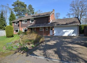 Thumbnail 4 bed detached house for sale in Chinnock Close, Fleet
