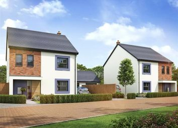 Thumbnail 4 bed detached house for sale in Hector, Wigton, Cumbria