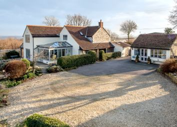 Thumbnail 5 bed detached house for sale in Hare Lane, Buckland St Mary