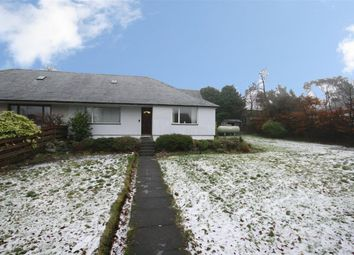 Thumbnail 3 bed semi-detached house for sale in Muckhart, Dollar