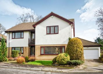 Thumbnail 5 bed detached house for sale in The Paddock, Lisvane