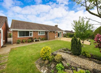 Thumbnail Detached bungalow for sale in Homefield, Child Okeford, Blandford Forum