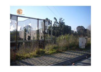 Thumbnail Land for sale in Esgueira, Esgueira, Aveiro