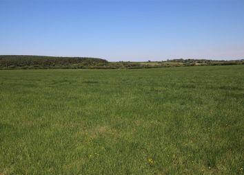 Woolsery, Bideford EX39. Land for sale