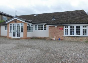 Thumbnail 5 bed bungalow to rent in Frenchwood Knoll, Preston