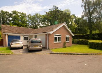 Thumbnail 3 bed bungalow for sale in Chestnut Drive, Ashurst, Southampton