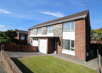 Thumbnail 4 bed semi-detached house for sale in Marquis Avenue, Bangor