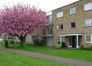 2 bed flat to rent in The Maples, Stevenage Road SG4