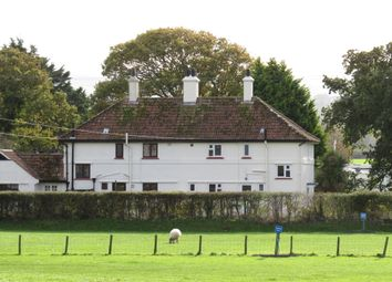 Thumbnail 3 bed semi-detached house for sale in Home Farm Cottages, Blue Anchor, Minehead