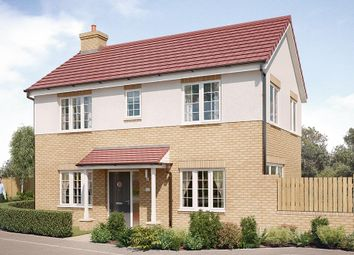 "Thumbnail 3 bed detached house for sale in ""The Dalton"" at Chilton, Ferryhill"