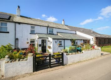 Thumbnail 2 bed cottage for sale in Primrose Cottage, Hayton, Cumbria