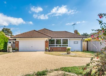 3 bed detached bungalow for sale in The Roystons, East Preston, Littlehampton BN16