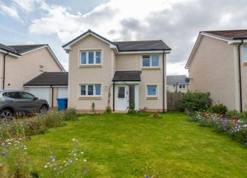 Thumbnail 4 bed detached house for sale in David Allan Drive, Alloa