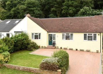 Thumbnail 4 bed semi-detached bungalow for sale in Harpesford Avenue, Virginia Water, Surrey