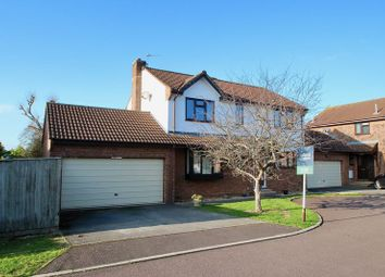 Thumbnail 4 bed detached house for sale in Meadow Close, Street