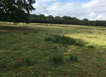 Thumbnail Farm for sale in Meshaw, South Molton