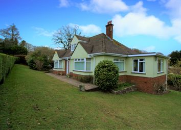 Thumbnail 3 bed detached house for sale in West Hill Road, West Hill, Ottery St. Mary
