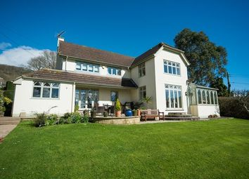 Thumbnail 4 bed detached house for sale in Harcombe, Sidmouth
