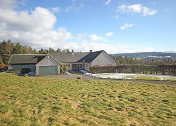 Thumbnail 6 bedroom detached house for sale in Hexham