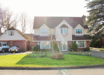 Thumbnail 4 bedroom detached house for sale in Clos Bryngwyn, Garden Village, Swansea