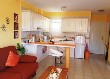 Thumbnail 1 bed apartment for sale in Chayofa, Arona, Tenerife, 38652