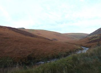Thumbnail Land for sale in Tregaron