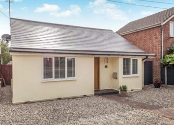 Thumbnail 5 bedroom detached bungalow for sale in Royal Court, Harwich Road, Colchester