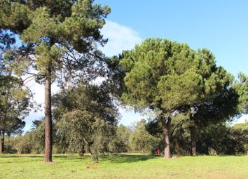 Thumbnail Land for sale in São Simão, 2925, Portugal